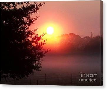 Canvas Print featuring the photograph Cool Morning by Erica Hanel