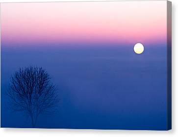 Cool Winter Sun Canvas Print by Todd Klassy