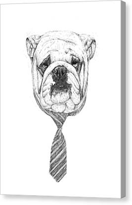 Black Tie Canvas Print - Cooldog by Balazs Solti