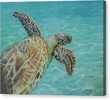Canvas Print featuring the drawing Cooling Off by Christie Minalga