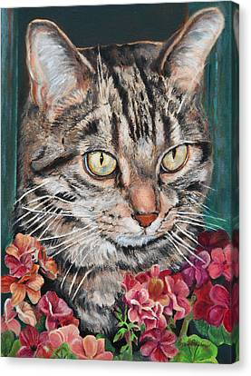 Cooper The Cat Canvas Print by Enzie Shahmiri