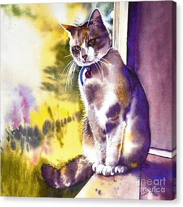 Coops The Cat Canvas Print