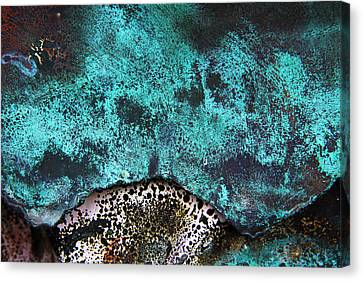 Copper Patina 2 Canvas Print by Marcus Adkins