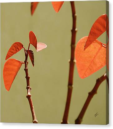 Canvas Print featuring the photograph Copper Plant 2 by Ben and Raisa Gertsberg