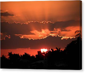 Copper Sunset Canvas Print by Rosalie Scanlon