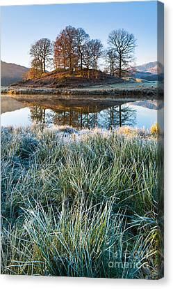 Copse Of Trees, Elterwater Canvas Print