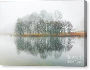 Foggy Day Canvas Print - Copse Of Trees In The Mist by Tony Higginson