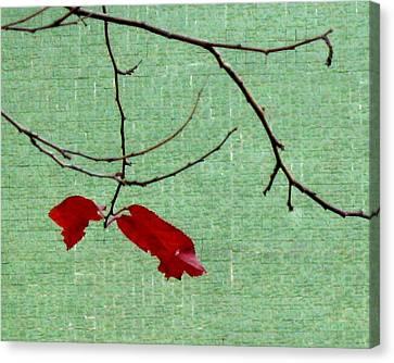 Coquetry Canvas Print by Ioana Geacar