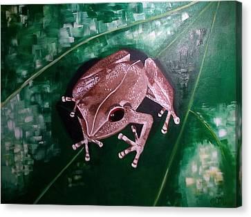 Coqui, Coqui Canvas Print by Olga Malave-Radi