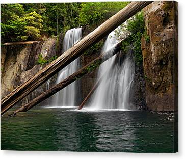 Coquille Falls 2 Canvas Print by Leland D Howard