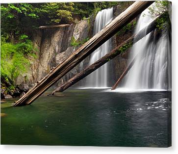 Coquille Falls 4 Canvas Print by Leland D Howard
