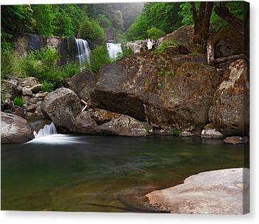 Coquille Falls 6 Canvas Print by Leland D Howard