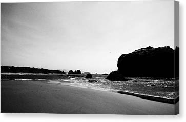 Coquille Point Canvas Print