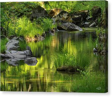 Coquille River Light. Canvas Print by Leland D Howard