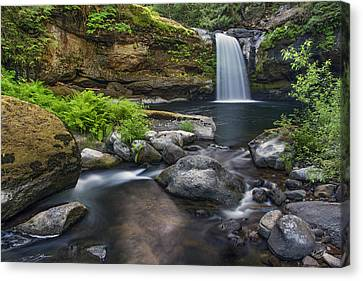 Coquille River Waterfall Canvas Print by Leland D Howard