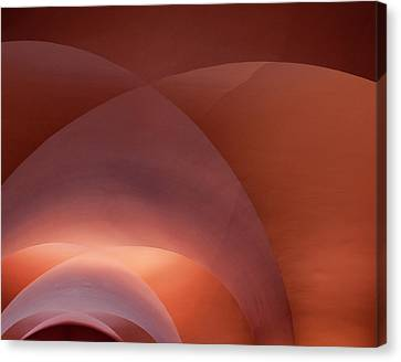 Coral Arched Ceiling Canvas Print