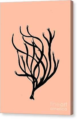 Coral Art- 2 Canvas Print