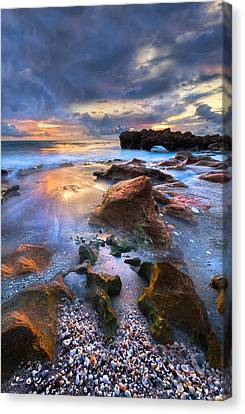 Coral Garden II Canvas Print by Debra and Dave Vanderlaan