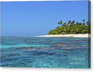 Coral Island Of Tonga Canvas Print