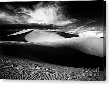 Coral Pink Sand Dunes Canvas Print - Coral Pink Sand Dunes Ll by Hideaki Sakurai