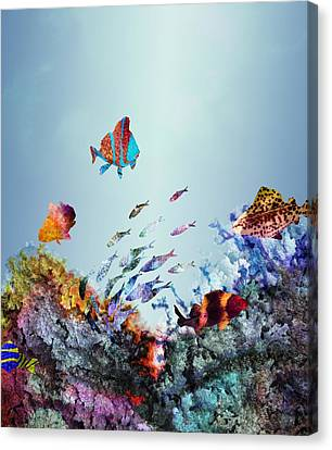 Coral Reef Canvas Print