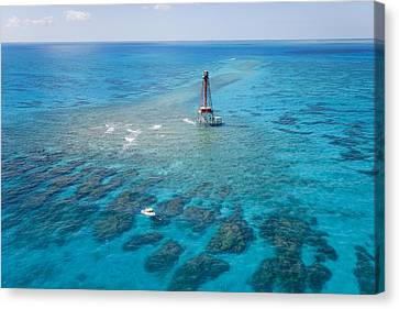 Coral Reefs Seen During Spring Low Canvas Print by Mike Theiss