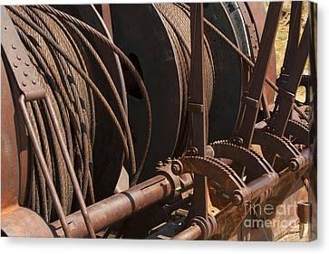 Cords That Bind Canvas Print