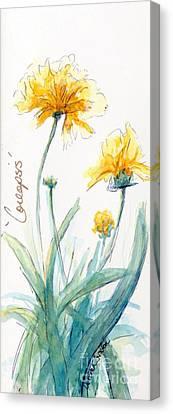 Coreopsis Canvas Print by CheyAnne Sexton