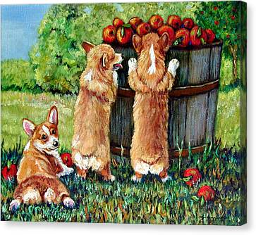Corgi Apple Harvest Pembroke Welsh Corgi Puppies Canvas Print by Lyn Cook
