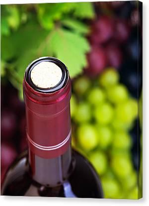 Cork Of Wine Bottle  Canvas Print by Anna Om