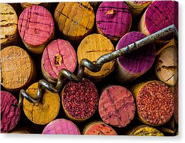 Corkscrew Close Up Canvas Print by Garry Gay
