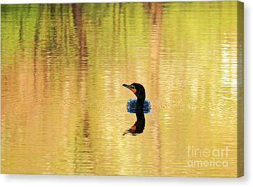 Cormorant With Reflections Canvas Print by Charline Xia