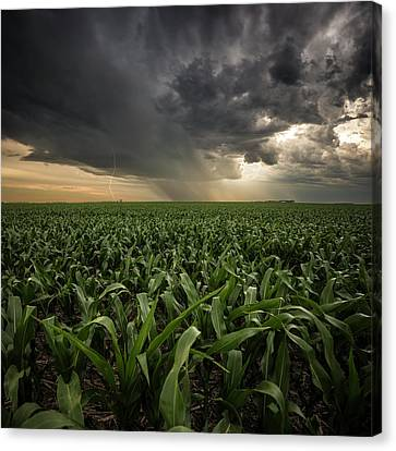 Canvas Print featuring the photograph Corn And Lightning by Aaron J Groen