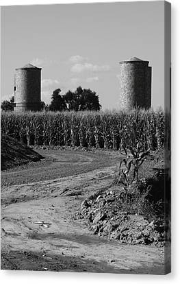 Corn And Silos Canvas Print by Troy Montemayor