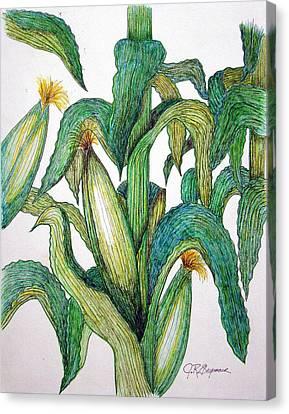 Corn And Stalk Canvas Print