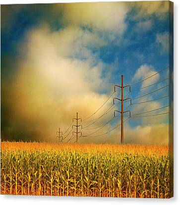 Corn Field At Sunrise Canvas Print