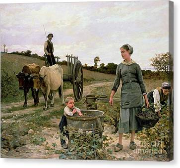 Picker Canvas Print - Corner Of A Vineyard by Edouard Debat Ponsan