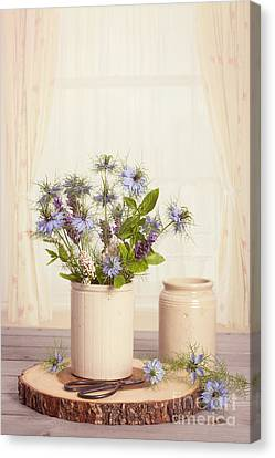 Cornflowers In Ceramic Pots Canvas Print by Amanda Elwell