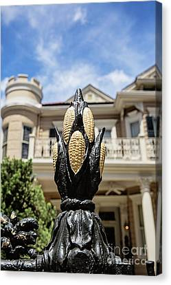 Cornstalk Fence - Royal Street Canvas Print