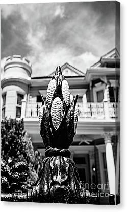 Cornstalk Fence Bw Canvas Print