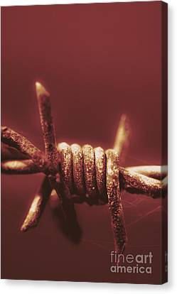 Barbed Wire Canvas Print - Corrosion Of Civil Liberties by Jorgo Photography - Wall Art Gallery