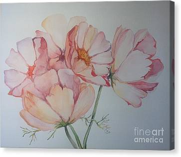 Cosmea Canvas Print by Iya Carson