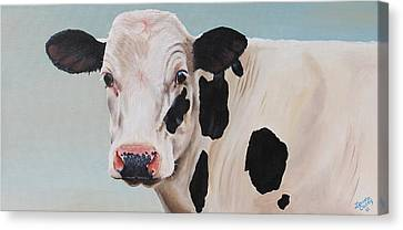Angus Canvas Print - Cosmoo Cow by Laura Carey