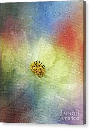 Cosmos In Textured Pastels By Kaye Menner Canvas Print by Kaye Menner