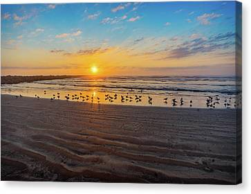 Coastal Sunrise Canvas Print
