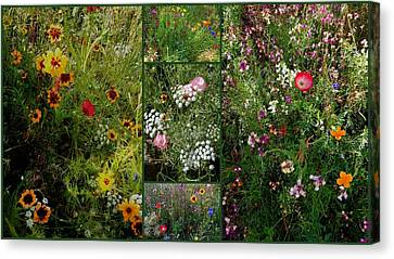 Cottage Garden Collage 2 Canvas Print by Dorothy Berry-Lound