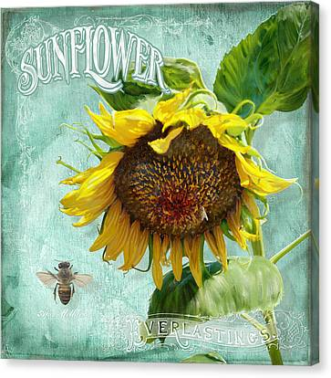 Cottage Garden - Sunflower Standing Tall Canvas Print by Audrey Jeanne Roberts