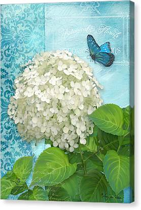 Cottage Garden White Hydrangea With Blue Butterfly Canvas Print by Audrey Jeanne Roberts