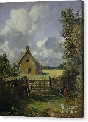 Cottage In A Cornfield Canvas Print