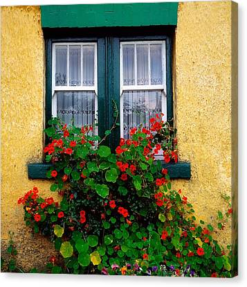 Cottage Window, Co Antrim, Ireland Canvas Print